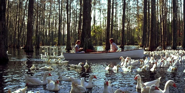 "The famous swan scene from ""The Notebook"""